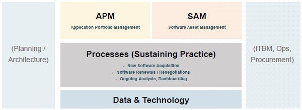 software asset management and application portfolio management